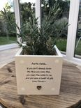 Personalised Shabby Chic Plant Pot AUNTIE gift AUNTY GREAT AUNT OR ANY NAME - 233308656460
